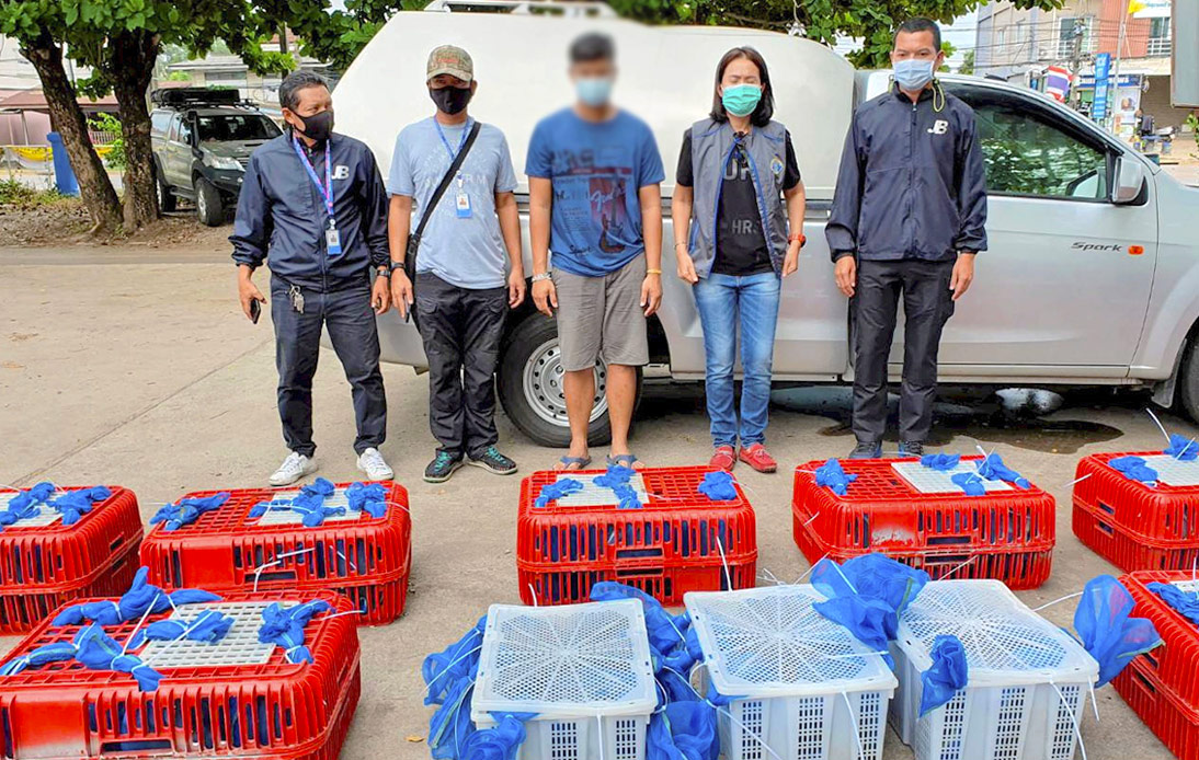 Police Rescue 88 Macaques From Being Sold As Exotic-Food